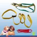 Dog Lead (Mainland China)