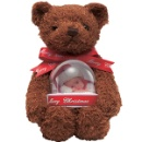 Teddy Bear Water Globe (Hong Kong)