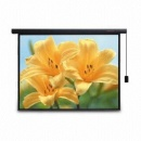 Projector Screen with Auto-fixed Function (China)