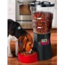 Automatic Pet Feeder (Hong Kong)