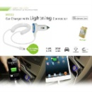 Lightning Car Charger (Canada)