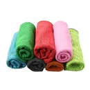 Instant Endurance Polyester Cooling Towel (Hong Kong)