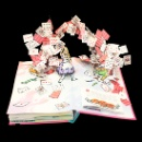 Pop-up Book (China)