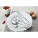 Tableware Cutlery Fork Spoon Table Knife Saucer Tray (China)