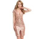 Champagne Bodycon Dress (China)