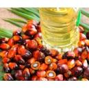 Refined Palm Oil (South Africa)