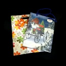 Gift Packaging Bag (Hong Kong)