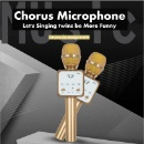 Wireless Bluetooth Chorus Microphone Hifi Speaker (Hong Kong)