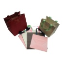 Paper Shopping Bags with Glued Handles (Mainland China)