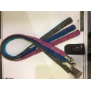 Dog Collar & Lead (United Kingdom)