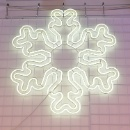 Snow LED Light (Mainland China)