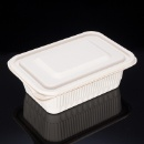 Biodegradable Disposable Rectangular 750ml Food Container (Mainland China)