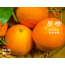 Fresh Fruit Sweet and Fragrant Orange	 (Mainland China)