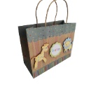 Waterproof Paperboard Gift Bag (Mainland China)