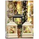 """Everyday Spring Lighted Flat Water Lantern 10.5""""H Snow Globe w/Swirling Glitter Battery Operated (Hong Kong)"""