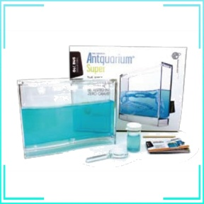 Antquarium Science Kit (Taiwan)