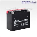 Leoch Dry Charged Motorcycle Battery (China)