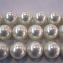Shell Pearl (China)