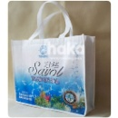 Recyle Shopping Bag (China)