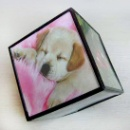Photo Cube Frame (China)
