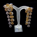 Platinum Yellow Gold Earring (USA)