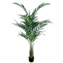 Artificial Palm Plant   (Hong Kong)