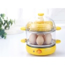 Food Steamer (China)