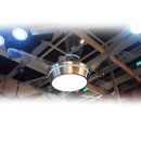 LED Ceiling Fan (China)
