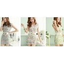 Lace Print Sleeveless Dress with Belt (Hong Kong)