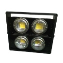 LED Flood Light with Flat Lense (China)