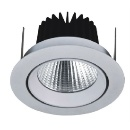 13W LED COB Down Light (Taiwan)