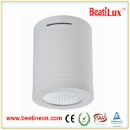 12W/18W/25W/30W/35W/40W  Surface Mounted LED Downlight Series (China)