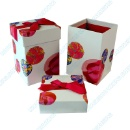 Cosmetic Gift Box (China)
