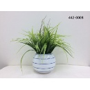 Grass on Round Pot (Hong Kong)