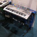 Electronic Keyboard (China)